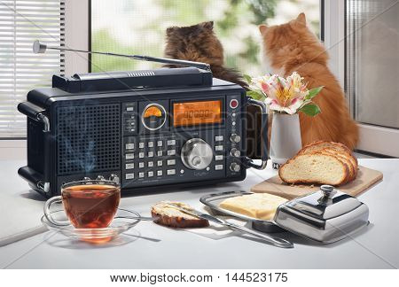 Hot tea, bread and oil on a table with the radio receiver against an open window with cats