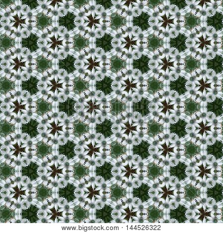 Green and white Sea Holly or Eryngium spiky flowers in a tileabe seamless repeat pattern