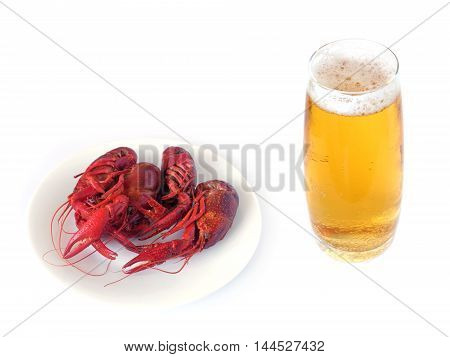 Four boiled crayfish color red and glass of beer isolated on white top view close-up