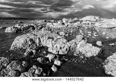 Tufa formations in Mono Lake. Monochrome. California, USA