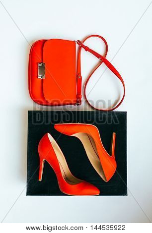 Women's handbag and stylish red shoes isolated