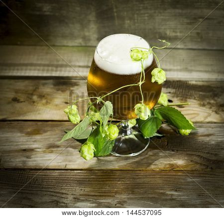Glass of cold beer with hops on a wooden background