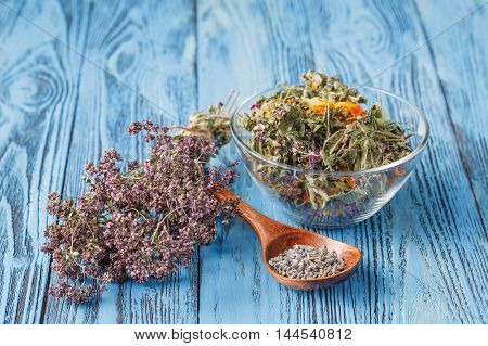 Assorted natural medical dried herbs on table