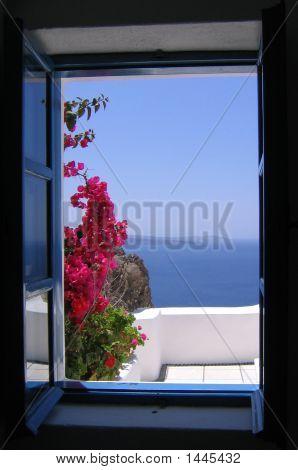 Ocean Glimpse