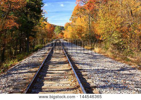 Railroad tracks continuing into autumn tree line
