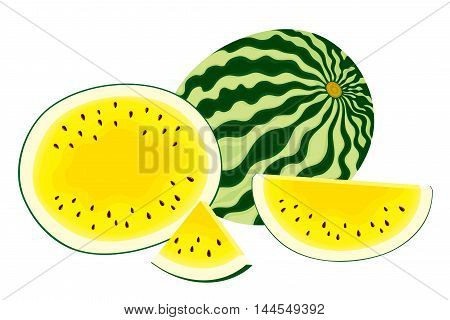 Vector illustration of isolated, fresh, whole watermelon, half and slices of yellow watermelon on white background.