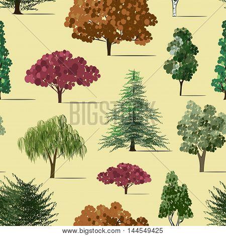 Hand drawn Trees sketch set pattern, vintage illustration.