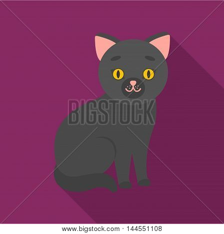 Cat icon of vector illustration for web and mobile design