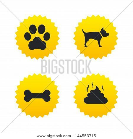 Pets icons. Dog paw and feces signs. Clean up after pets. Pets food. Yellow stars labels with flat icons. Vector