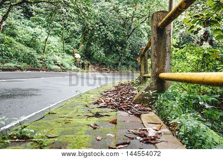Turn of the road surrounded by green tropical forest in high Bali mountains, Indonesia.