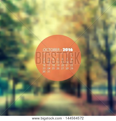Monthly Calendar 2016, October - Blurred Background, Woods, Autumn Walkway in the Park, Vector Illustration Design