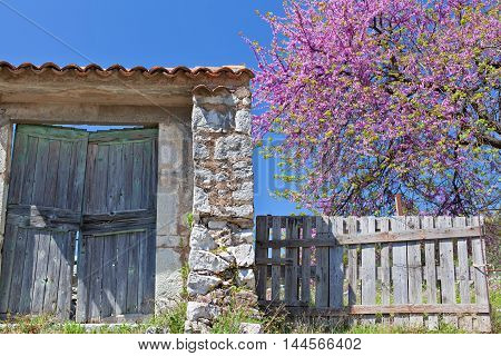 An old rustic doorway in town of Bar
