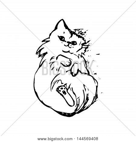 graphic image of a cat laying on back on white background