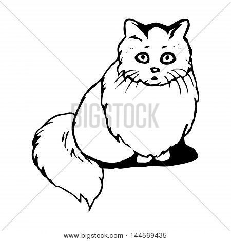 graphic image of a cat with big eyes pattern on a white background