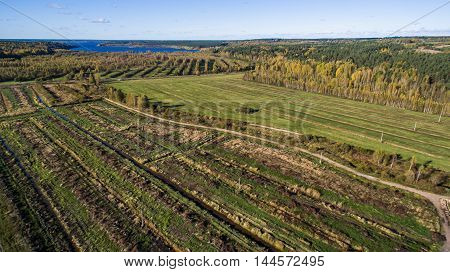 Aerial view cultivared fields at countryside at summer time