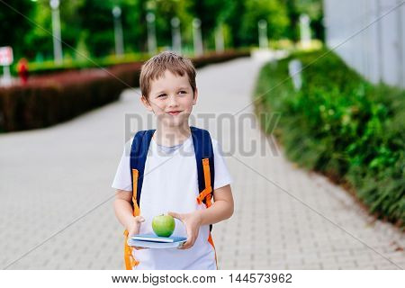 Little 7 Years Old Boy With Books And Apple