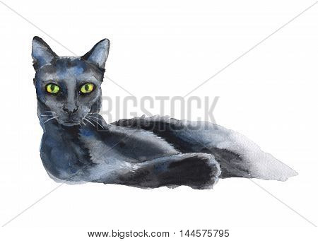 reclining black cat. a stand-alone sketch. the symbol of Halloween. watercolor illustration.