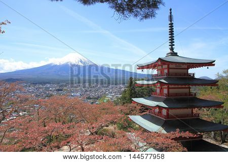 Mt. Fuji and cherry blossoms with five storied pagoda from Arakura yama Sengen park