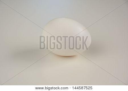 Light Room Shooting Of Organic Egg