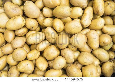 close up of fresh organic potatoes sold on market