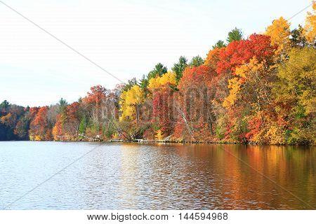 Autumn trees along calm lake shore line