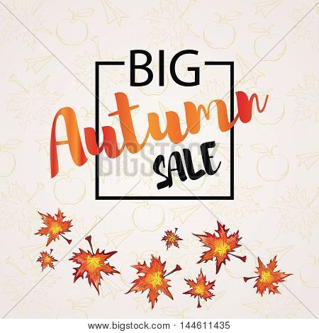 Autumn sale banner with inscription in the black box on a background with maple leaves concept label conceptual image vector illustration