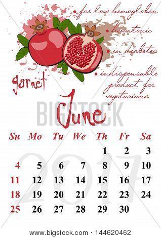 Calendar design grid with useful properties of fruits and dates of summer month June 2017. Garnet. Vector illustration