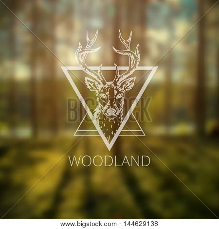 Hipster triangle hipster logo with deer on blurry forest background