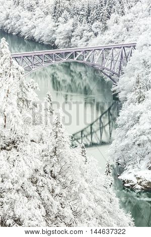 Winter landscape snow covered trees with River and Bridge