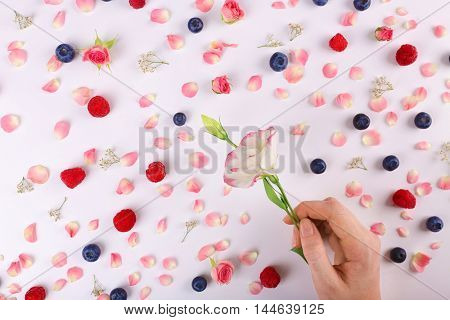 Female hand holding flower bud on pattern background with berries and flowers