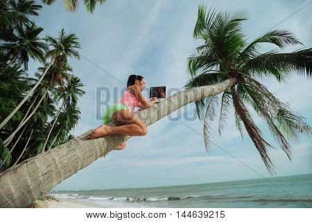 Attractive woman with laptop seated in a tree on a tropical beach.
