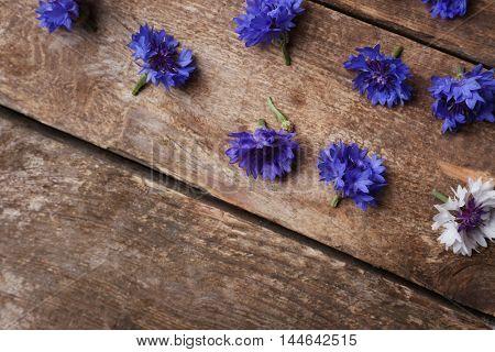 Bluett flowers scattered on wooden background