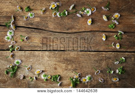 Frame made of chamomile flowers on wooden background