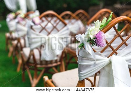 Wedding Chairs Decorated With Flowers. Close Up.