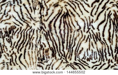 Background, Texture. Sheepskin, Lambskin, Sheep, Budge. A Sheep's Skin With The Wool On, Especially