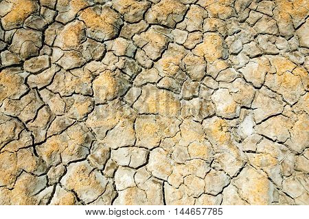 Texture Of Dry Land