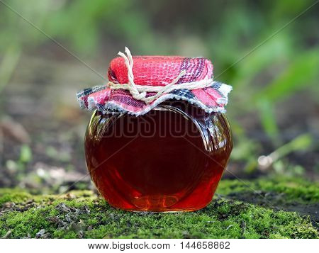 Red transparent syrup jam or marmalade in a jar. Background nature forest moss
