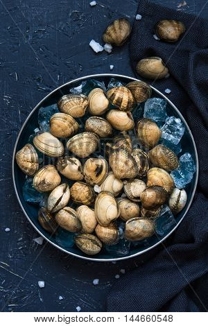 Fresh clams in a blue tray over ice