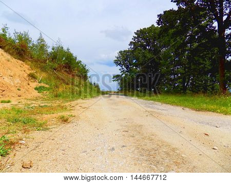 Asphalt road in nature during sunny day