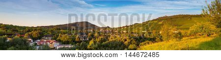 Panoramic image of a vineyard in Baden-Baden