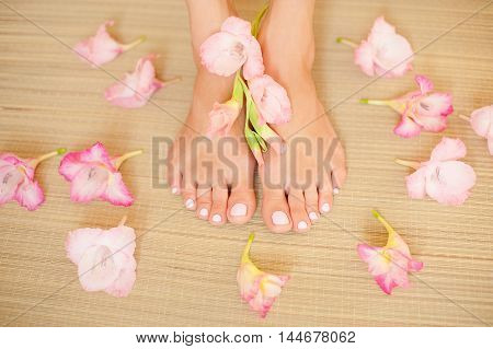 Beautiful female legs. Beauty spa and skin care concept.
