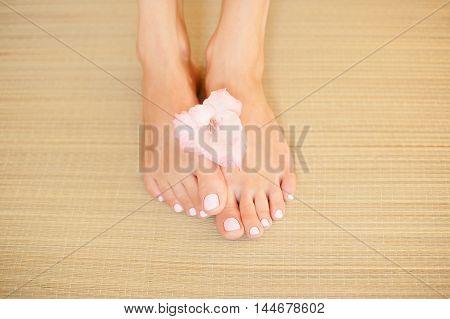 beautiful pink flower in the women's legs