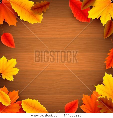 Colorful autumn leaves on old wood background