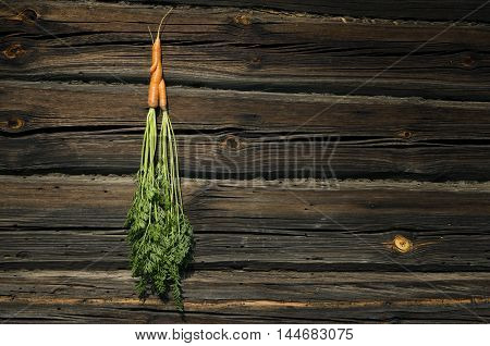 Two carrots entwined together on a wooden background