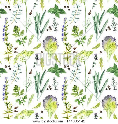 Hand drawn watercolor herbs and spices collection