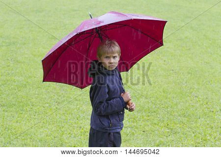 Boy under umbrella in the rain. Green grass background. Outdoors.