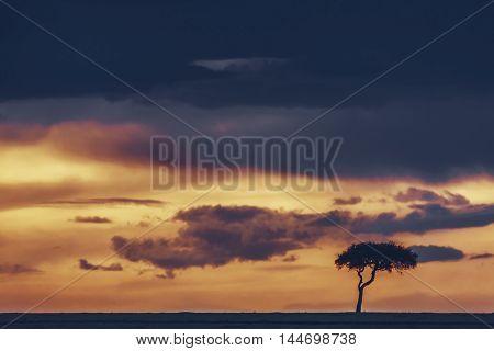 Landscape At Sunset In Masai Mara, Kenya.