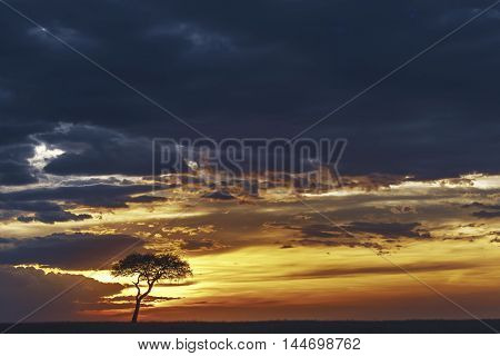 Colorful Sunset In Masai Mara, Kenya.