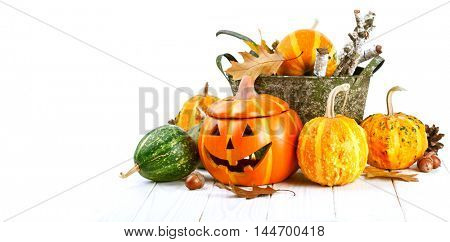 Halloween pumpkin autumn still life at holiday with acorn and dry leaves white wooden board. Isolated on background