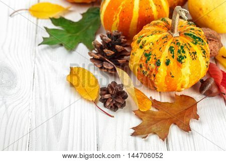 Halloween pumpkins with pinecone and autumn dry leaves at wooden white board